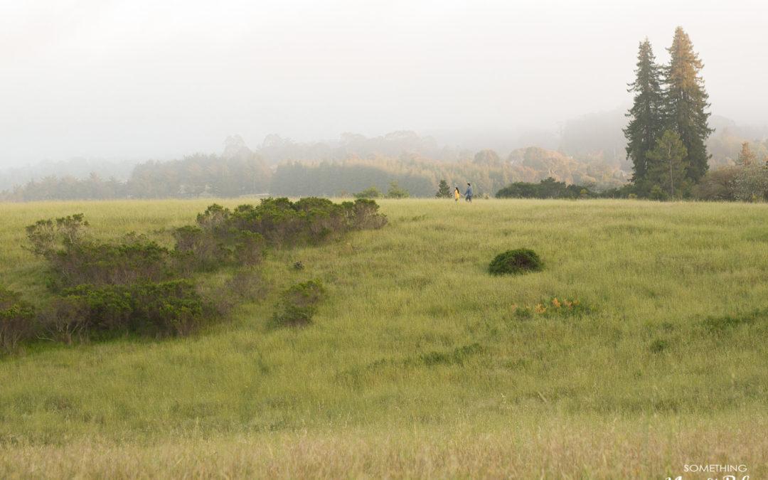 UC Santa Cruz Engagement San Francisco | Kim + Thaison