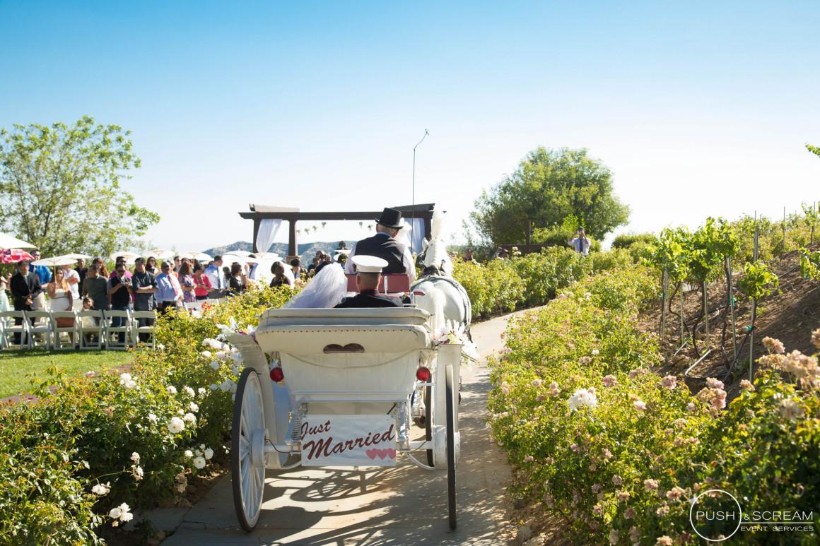 Serendipity Garden Wedding Photography Push and Scream